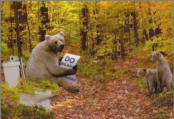 bears-poop
