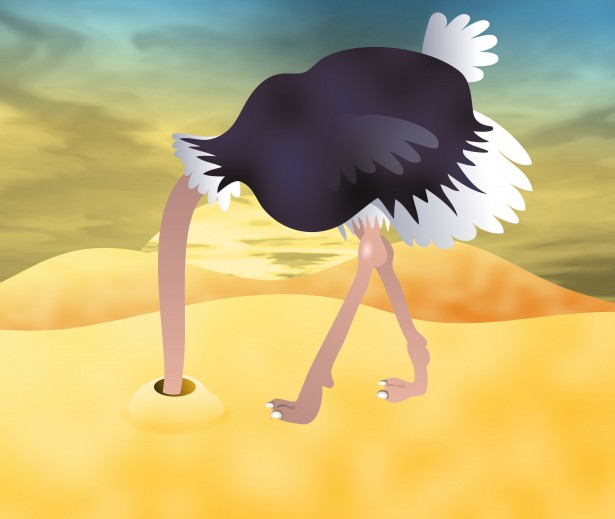 head-in-sand-ostrich-clipart-6.jpg